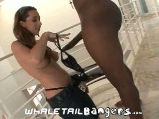 assfucking, veľké prsia, análny sex
