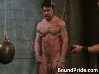 הומוסקסואל, זמום, כבול