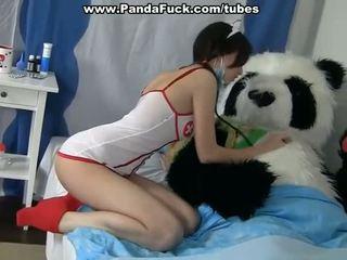 Špinavý pohlaví na lék a nemocný panda