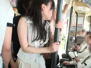 Innocent kočka nahmatané na a autobus