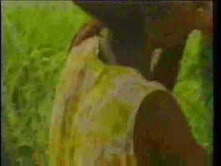 реколта, африкански, абанос