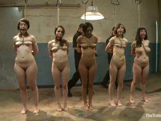 Sexy females hebben hun vags toyed in een kinky sadism film