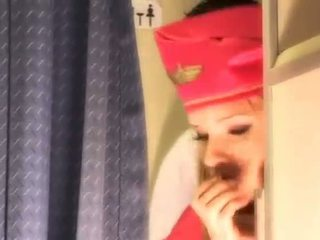 jednotný, air hostesses