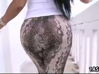 quality ass fun