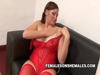 shemale sucked girl, quality stars shemale, free pornpros shemale