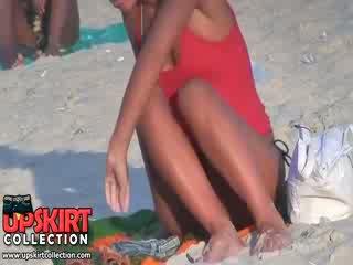 Guy spied il carina bene shaped corpo di lungo legged sciocca in il caldi micro bikini