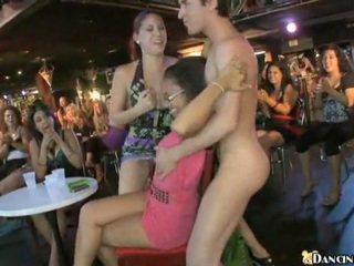 Uusi male stripper