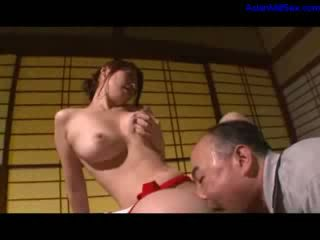 японський, пума, старий