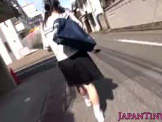 Tiny japanska skol felledup