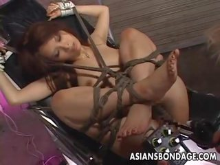 Tied up slut gets banged by various things