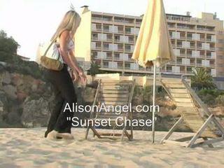 een strand alle, knipperende, plagen hq