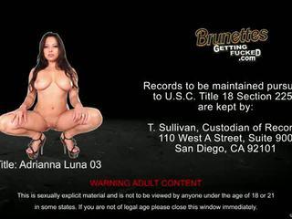 brunette, big boobs