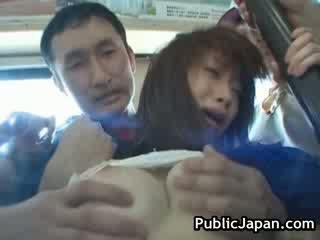 cock, fan, japansk