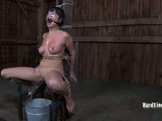 hardcore sexo, sexo, humilhação