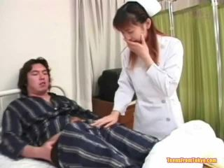 giapponese, pulcino, fascino