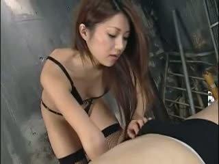 licking, japan, femdom