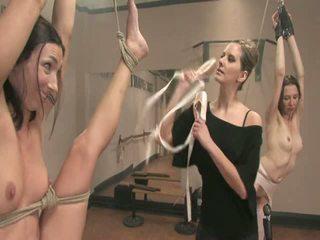 Балерина doxies