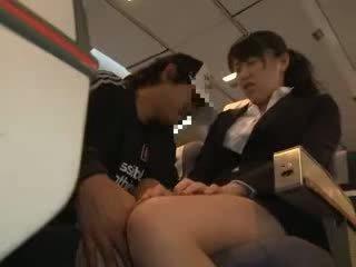 ひよこ 女性 模索 と ファック で a ビジネス airliner